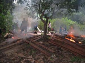 BUKTI: Petugas memusnahkan barang bukti perambahan liar di Taman Wisata Alam Paloh. ISTIMEWA